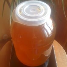 Свежий мёд июнь-июль 2011